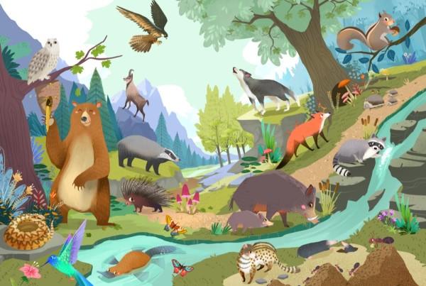 Grandi Cartonati - Animali - Rusconi - Bellotti Elisa Cerca trova animali. Libri per ragazzi. libri per bambini - Illustratrice Elisa Bellotti. Illustratrice per ragazzi Elisa Bellotti